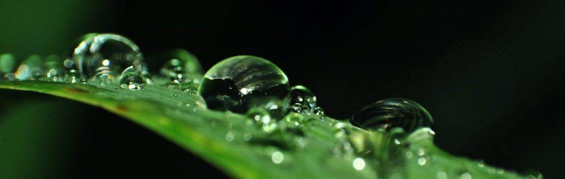 bubble-clean-clear-close-up-343188